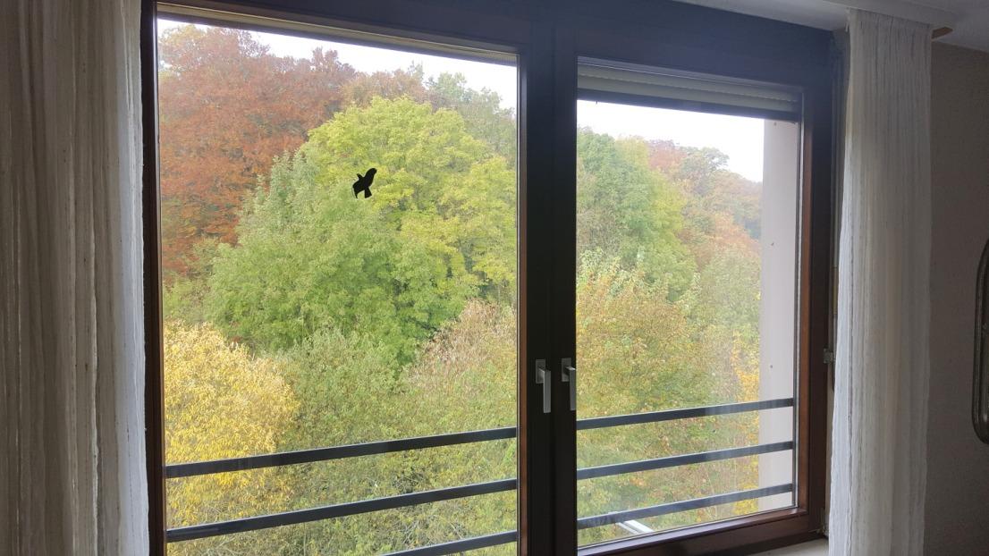 Exklusive Maisonette Dachgeschosswohnung mit 2 Balkonen und Tiefgarage direkt am Naturschutzgebiet
